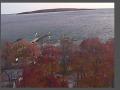 Fall_Cedar_Point